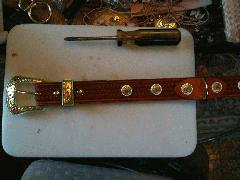 Dog-Collars-CanyonBuckleandConchos.jpg